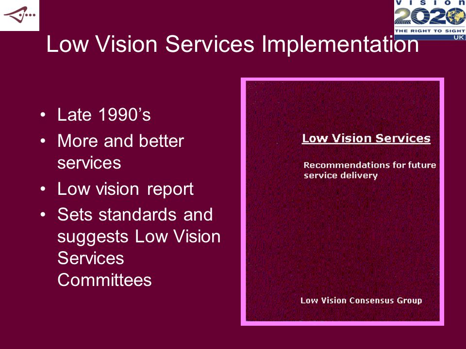Low Vision Defined A low vision service us a rehabilitative or habilitative process which provides a range of services for people with low vision to enable them to make best use of their eyesight and visual function to achieve maximum potential