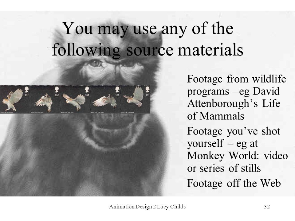 Animation Design 2 Lucy Childs32 You may use any of the following source materials Footage from wildlife programs –eg David Attenborough's Life of Mammals Footage you've shot yourself – eg at Monkey World: video or series of stills Footage off the Web