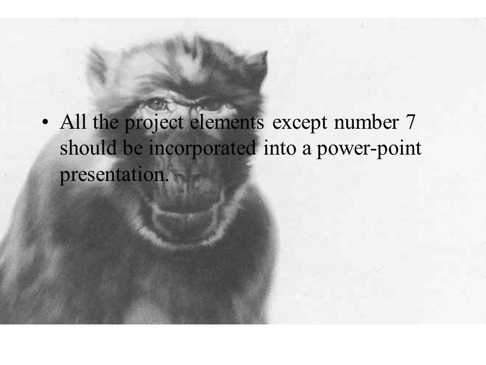 All the project elements except number 7 should be incorporated into a power-point presentation.