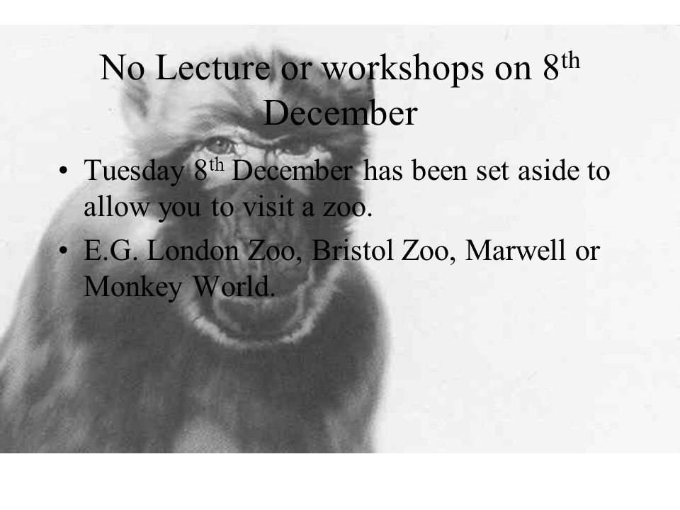 No Lecture or workshops on 8 th December Tuesday 8 th December has been set aside to allow you to visit a zoo.