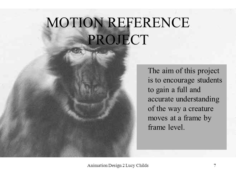 7 MOTION REFERENCE PROJECT The aim of this project is to encourage students to gain a full and accurate understanding of the way a creature moves at a frame by frame level.