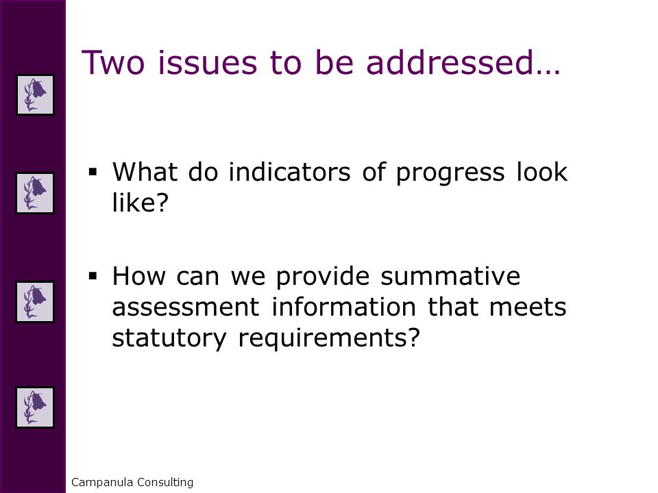 Campanula Consulting  What do indicators of progress look like.