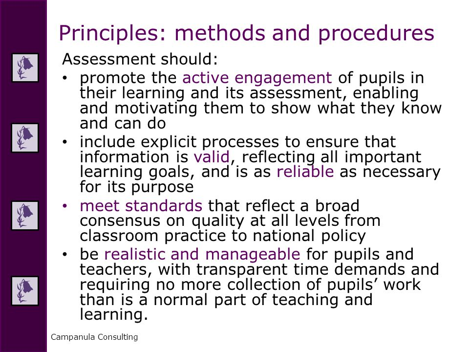 Campanula Consulting Assessment should: promote the active engagement of pupils in their learning and its assessment, enabling and motivating them to