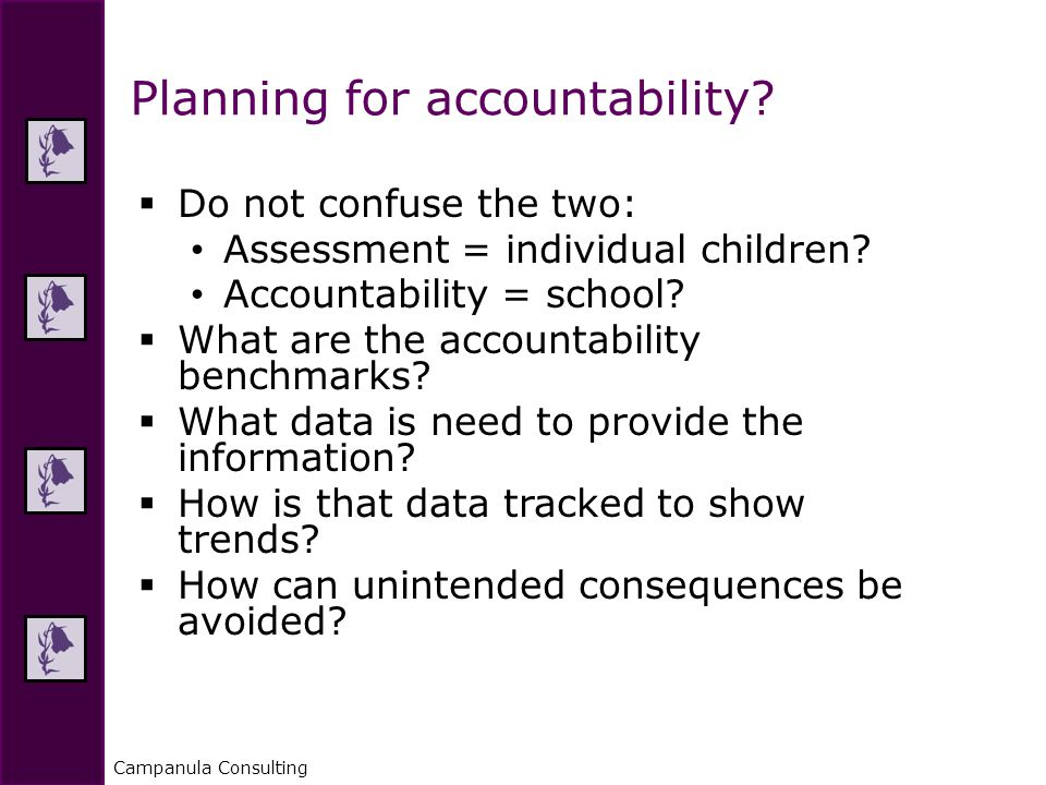 Campanula Consulting  Do not confuse the two: Assessment = individual children.