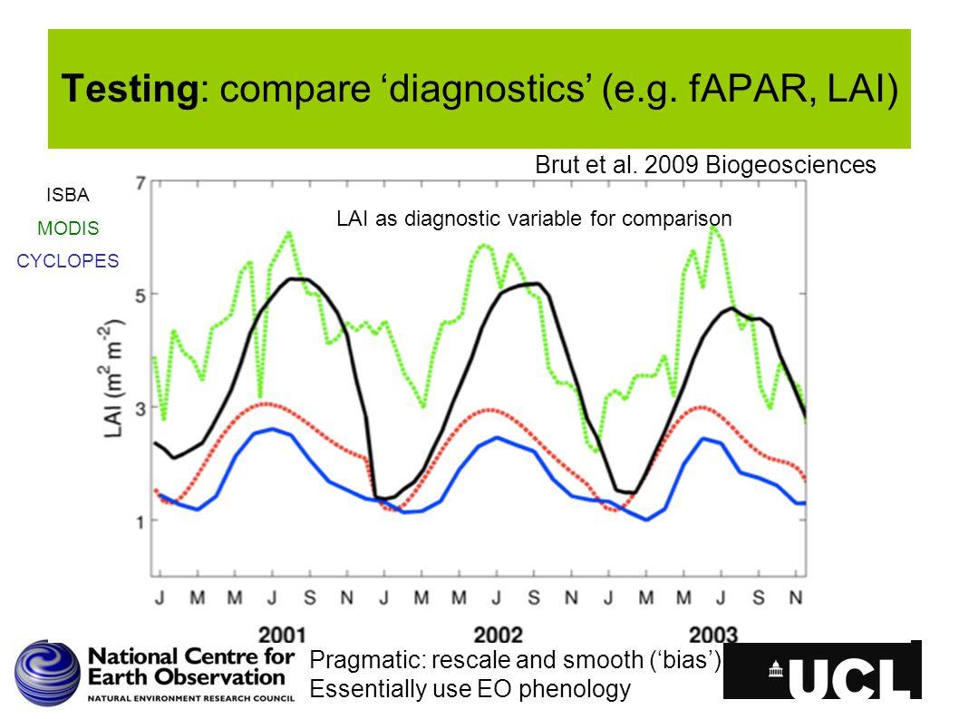 Testing: compare 'diagnostics' (e.g. fAPAR, LAI) Brut et al.