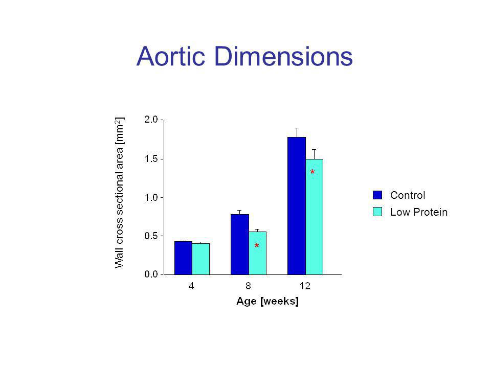 Aortic Dimensions * * Wall cross sectional area [mm 2 ] Control Low Protein