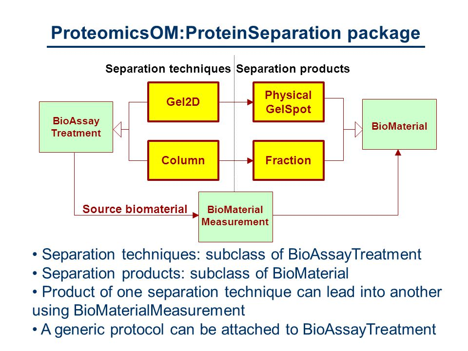 Gel2DColumn Physical GelSpot Fraction Separation techniquesSeparation products Source biomaterial BioMaterial BioAssay Treatment BioMaterial Measurement ProteomicsOM:ProteinSeparation package Separation techniques: subclass of BioAssayTreatment Separation products: subclass of BioMaterial Product of one separation technique can lead into another using BioMaterialMeasurement A generic protocol can be attached to BioAssayTreatment