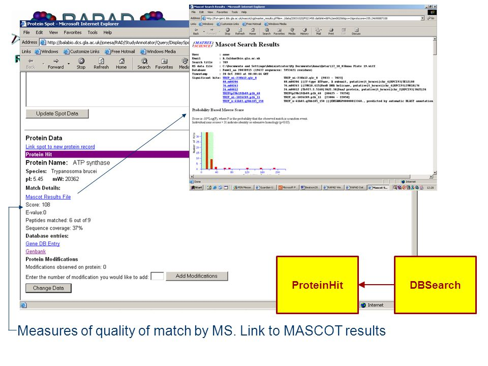 Measures of quality of match by MS. Link to MASCOT results ProteinHitDBSearch