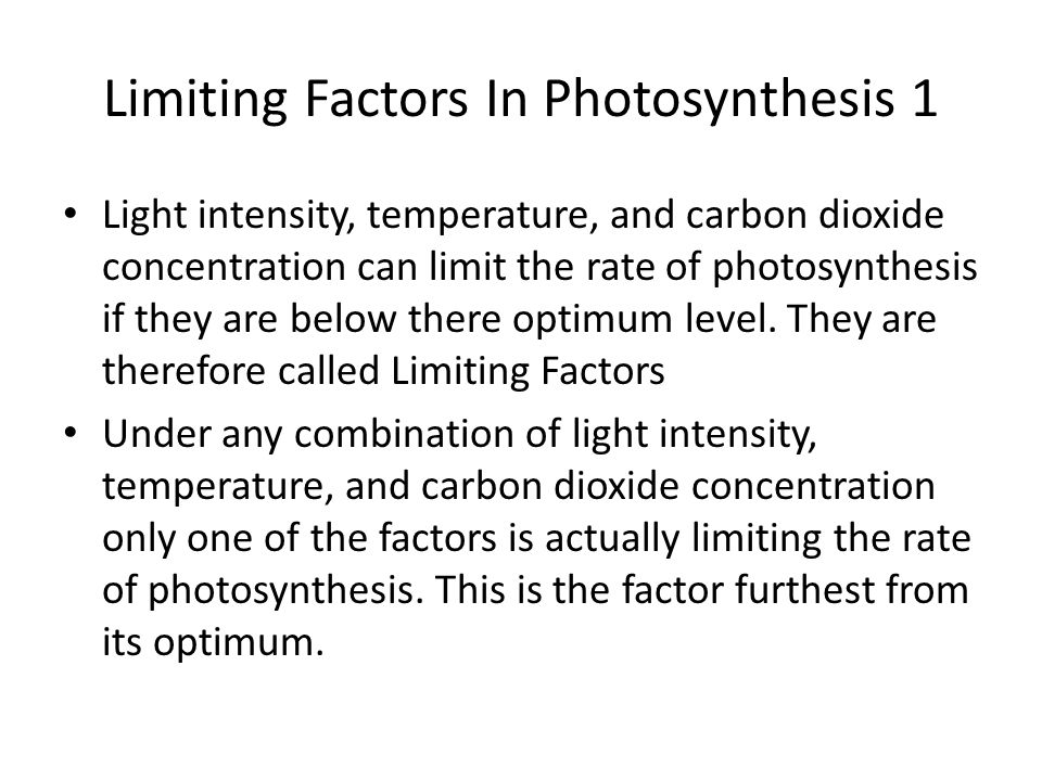 Limiting Factors In Photosynthesis 2 If the factor is changed to make it closer to the optimum then the rate of photosynthesis increases, but changing the other factors will have no effect as they are not the limiting factor.