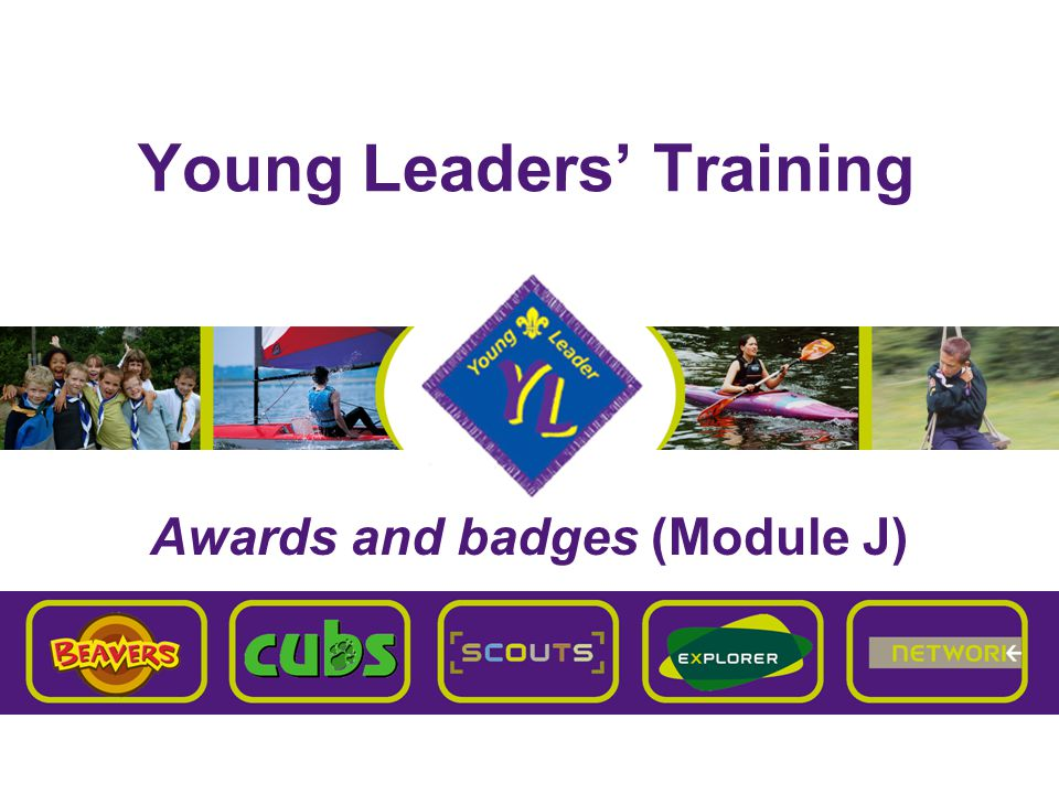Brentwood Explorer Scouts Young Leaders' Training J – Awards and badges Chief Scout's  Bronze (Beavers)  Silver (Cubs)  Gold (Scouts)  Platinum Award (Explorer Scouts) linked to Bronze D of E Award  Diamond Award linked to Silver D of E Award Queen Scout's Award linked to Gold D of E Award Schemes Explorer & Network