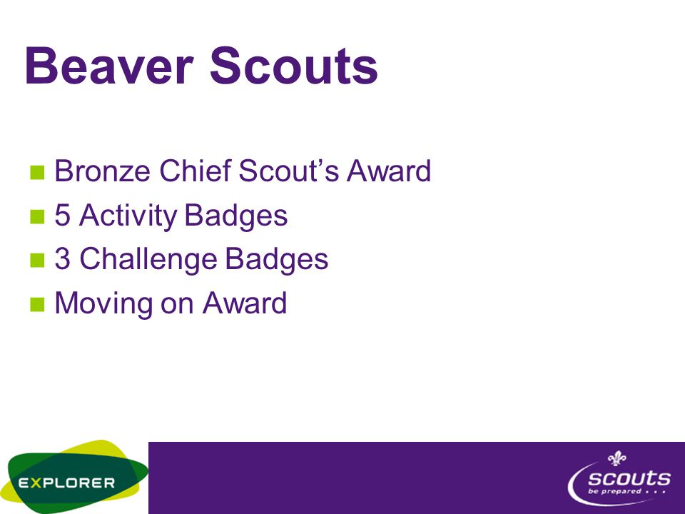 Beaver Scouts Bronze Chief Scout's Award 5 Activity Badges 3 Challenge Badges Moving on Award