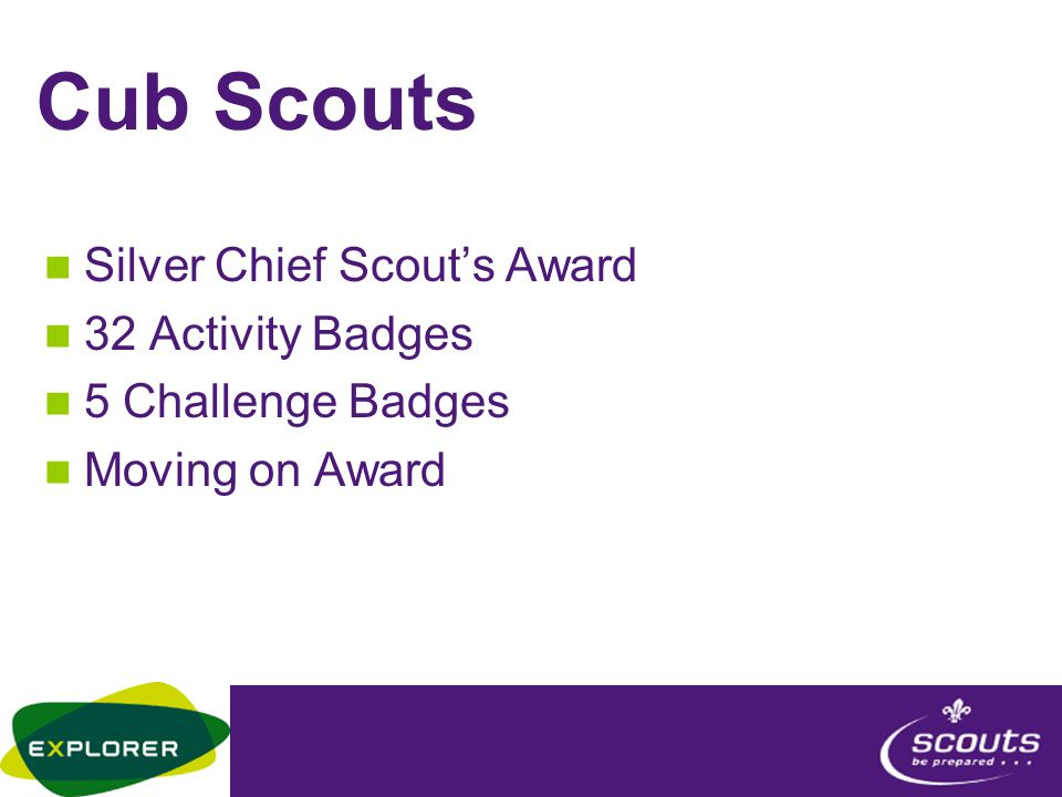 Cub Scouts Silver Chief Scout's Award 32 Activity Badges 5 Challenge Badges Moving on Award