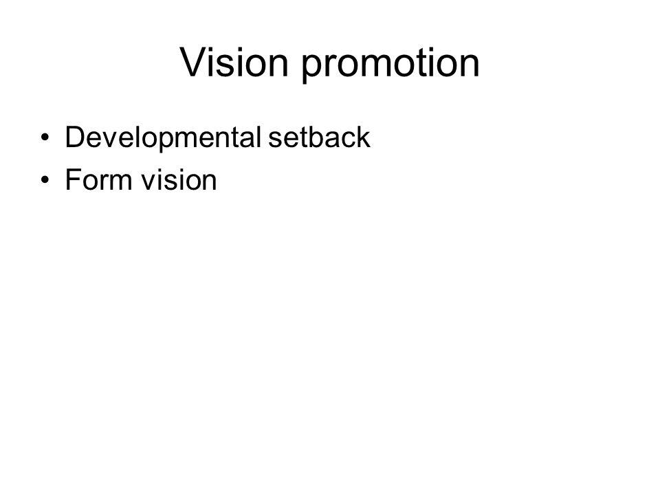 Vision promotion Developmental setback Form vision
