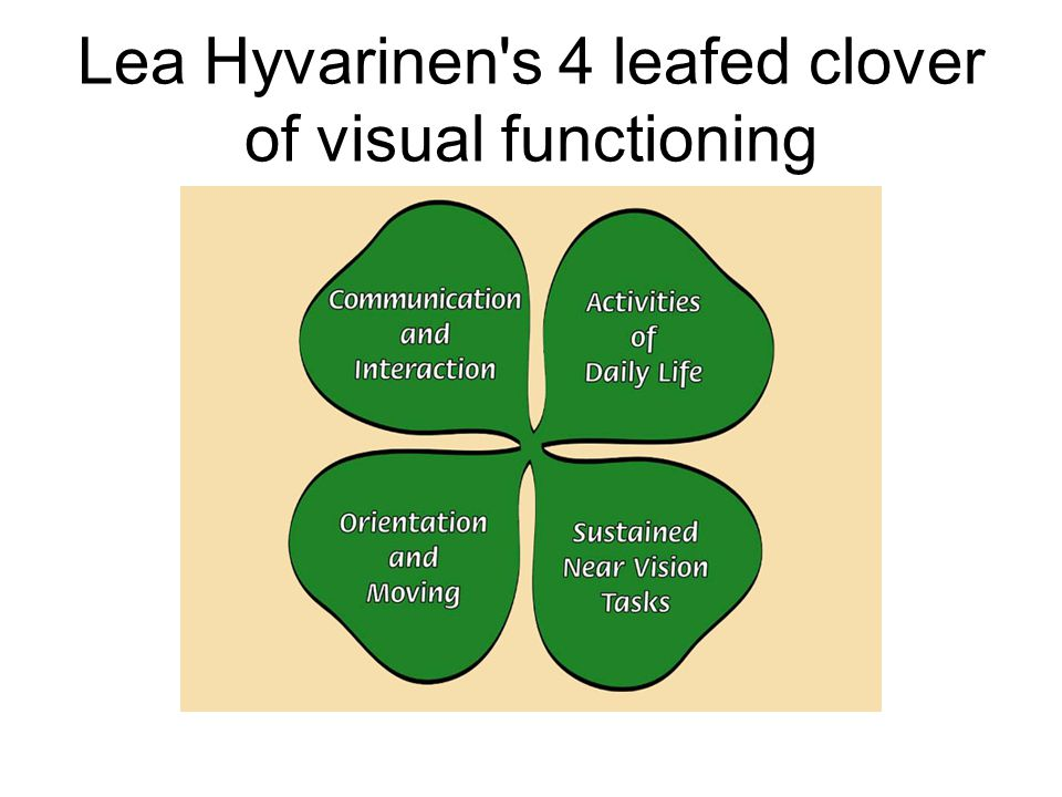 Lea Hyvarinen s 4 leafed clover of visual functioning