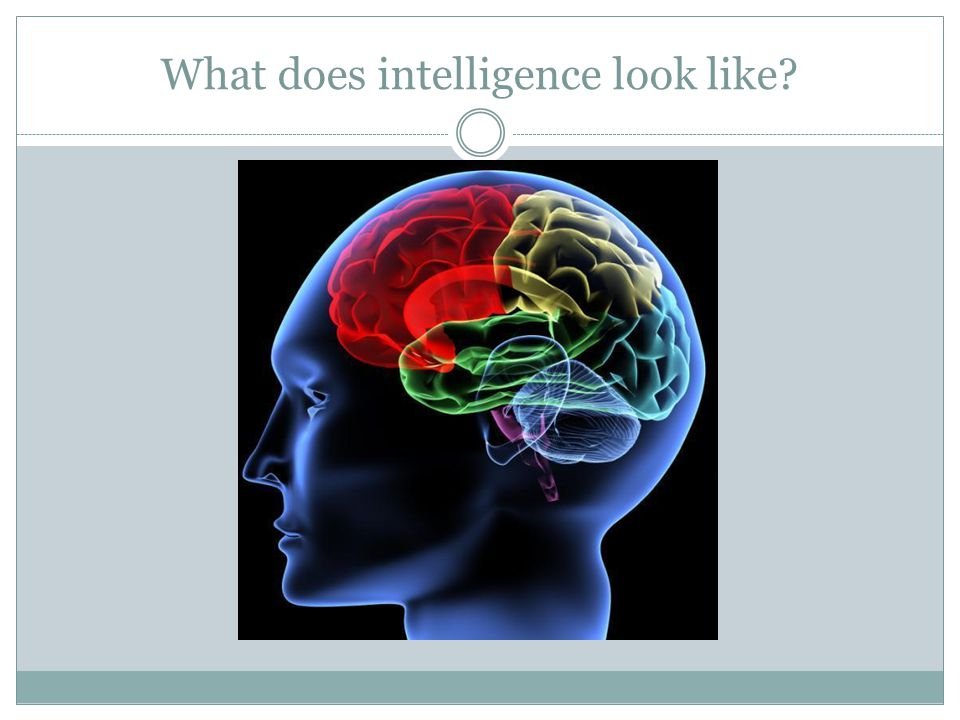 What does intelligence look like