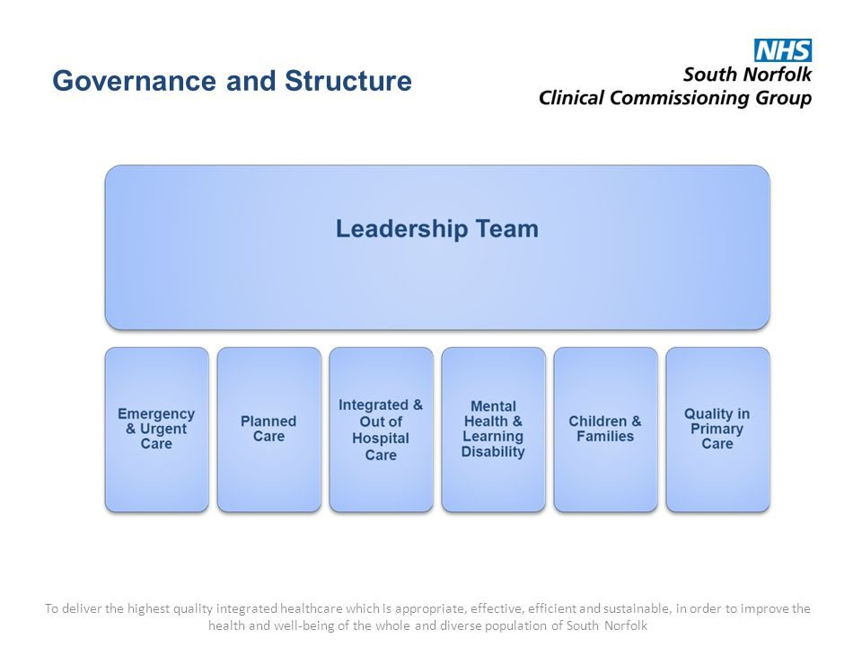 Governance and Structure To deliver the highest quality integrated healthcare which is appropriate, effective, efficient and sustainable, in order to improve the health and well-being of the whole and diverse population of South Norfolk