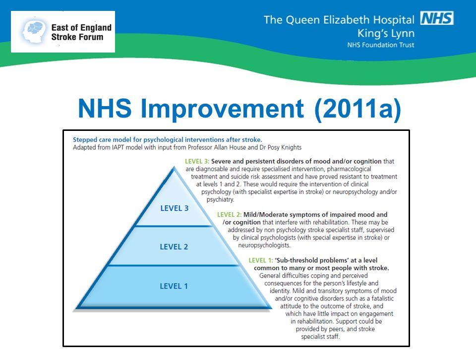 NHS Improvement (2011a)