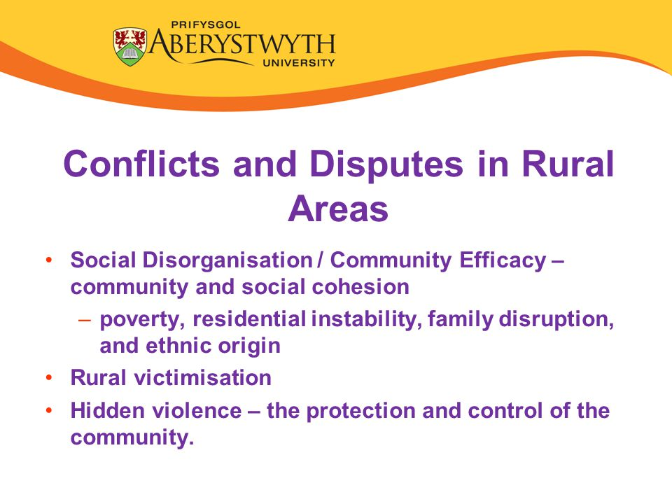 Conflicts and Disputes in Rural Areas Social Disorganisation / Community Efficacy – community and social cohesion –poverty, residential instability, family disruption, and ethnic origin Rural victimisation Hidden violence – the protection and control of the community.