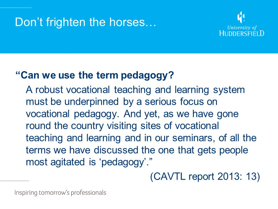 "Don't frighten the horses… ""Can we use the term pedagogy? A robust vocational teaching and learning system must be underpinned by a serious focus on v"