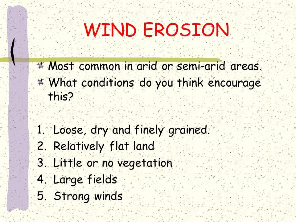 Soil Erosion by Wind
