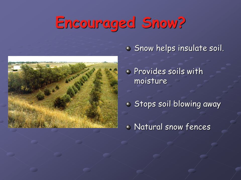Irrigation Drip irrigation is used extensively in dryer areas to help keep soil moist.