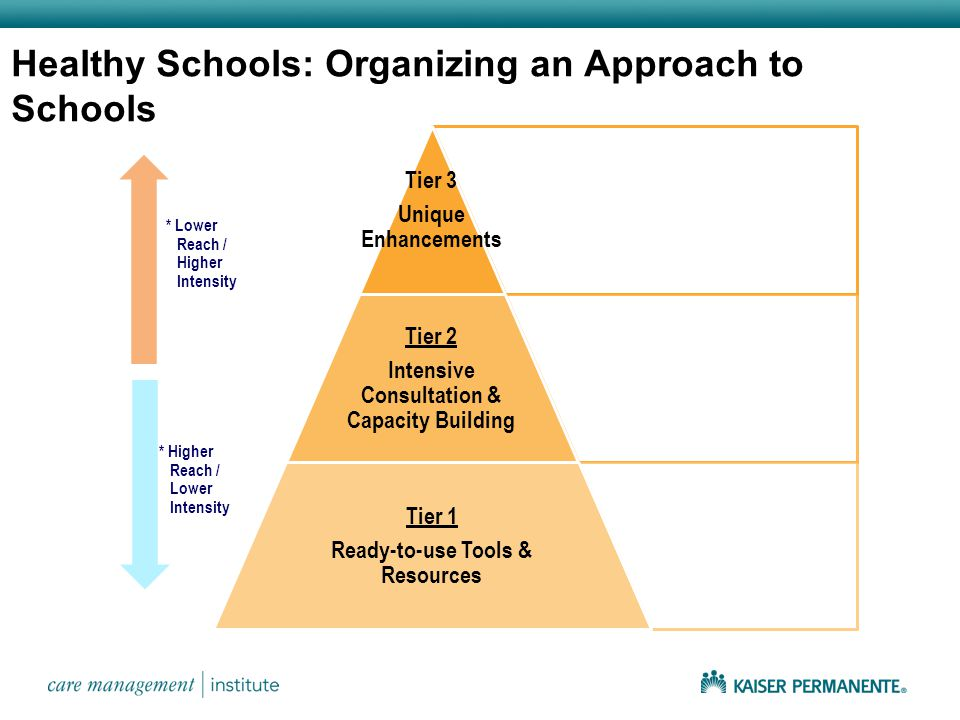 Tier 3 Unique Enhancements Tier 2 Intensive Consultation & Capacity Building Tier 1 Ready-to-use Tools & Resources * Lower Reach / Higher Intensity * Higher Reach / Lower Intensity Healthy Schools: Organizing an Approach to Schools