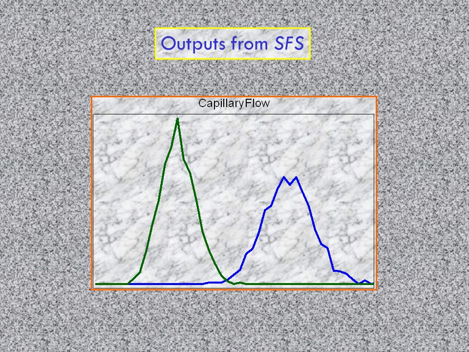 Outputs from SFS