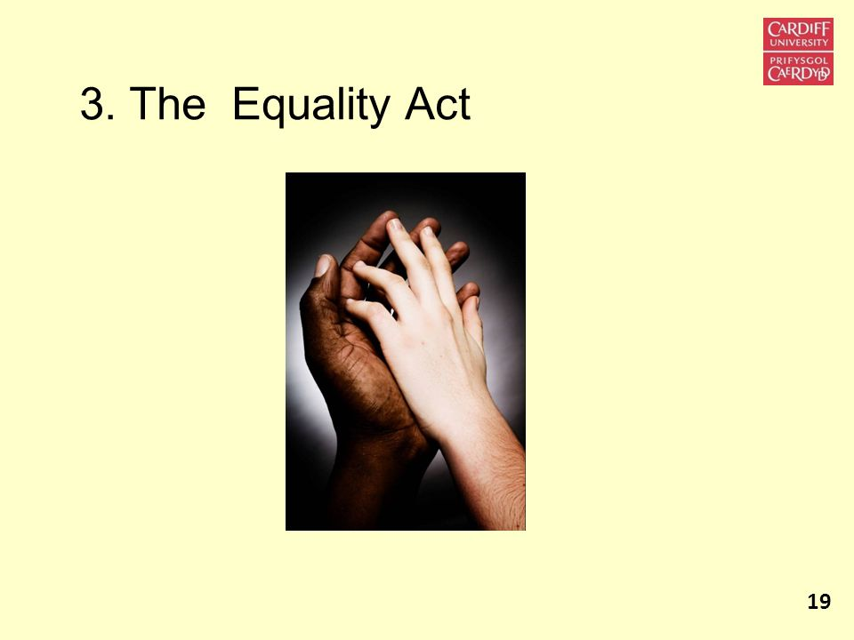 3. The Equality Act 19