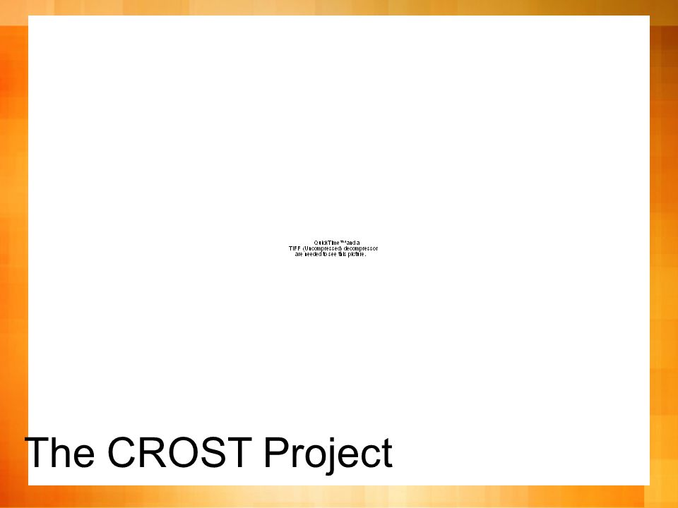 The CROST Project