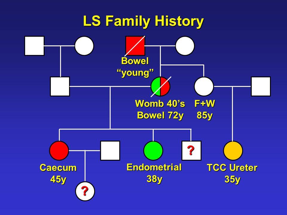 LS Family History Caecum45y Bowel young TCC Ureter 35y Endometrial38y Womb 40's Bowel 72y .