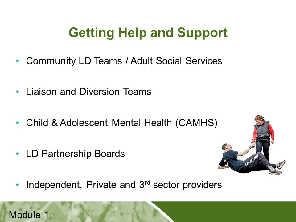 Positive Practice Positive Outcomes Getting Help and Support Module 1 Community LD Teams / Adult Social Services Liaison and Diversion Teams Child & Adolescent Mental Health (CAMHS) LD Partnership Boards Independent, Private and 3 rd sector providers