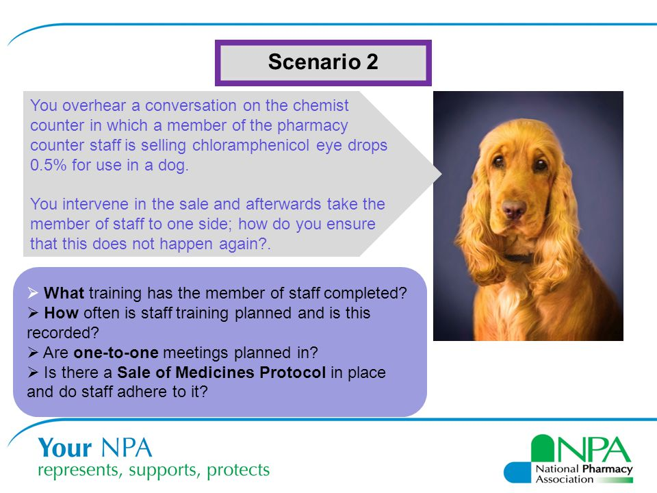 Scenario 2 You overhear a conversation on the chemist counter in which a member of the pharmacy counter staff is selling chloramphenicol eye drops 0.5% for use in a dog.