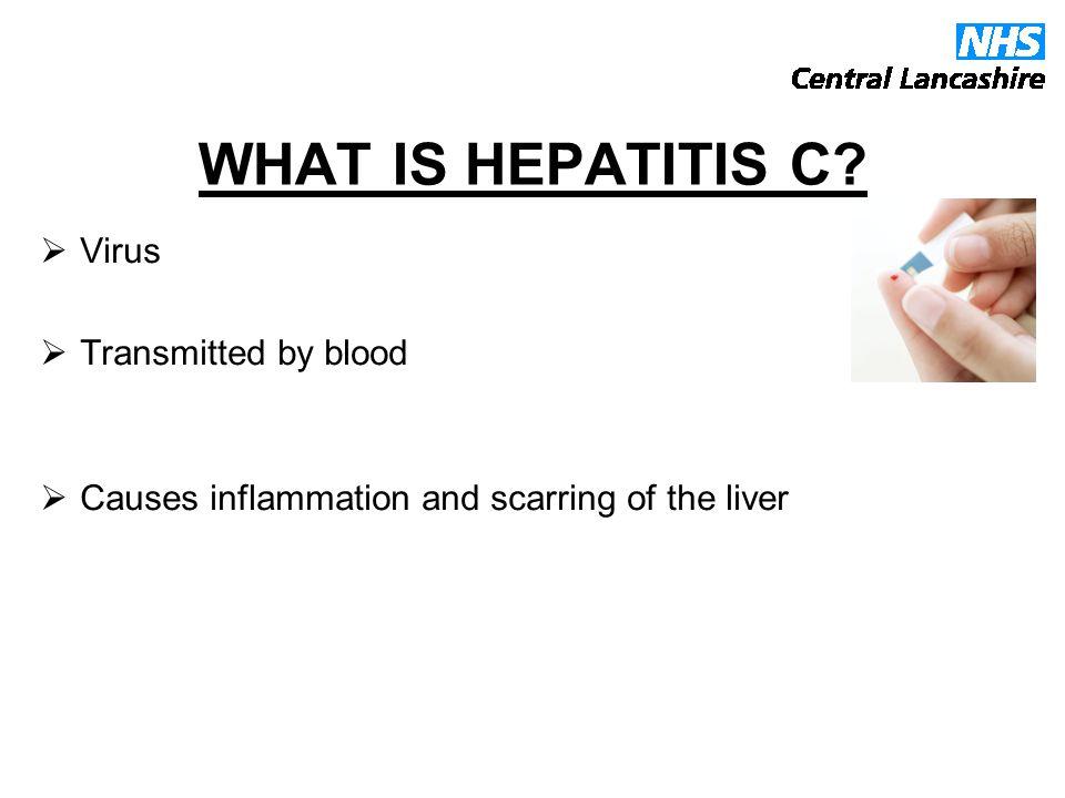 What is Hepatitis C.