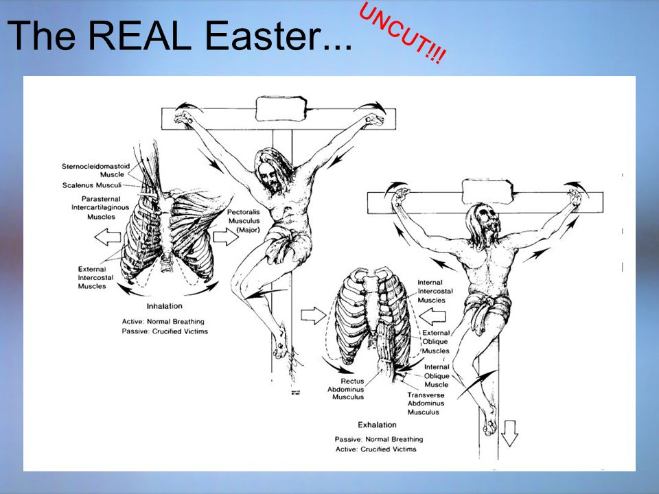 The REAL Easter...UNCUT!!. The True Joy of Easter...