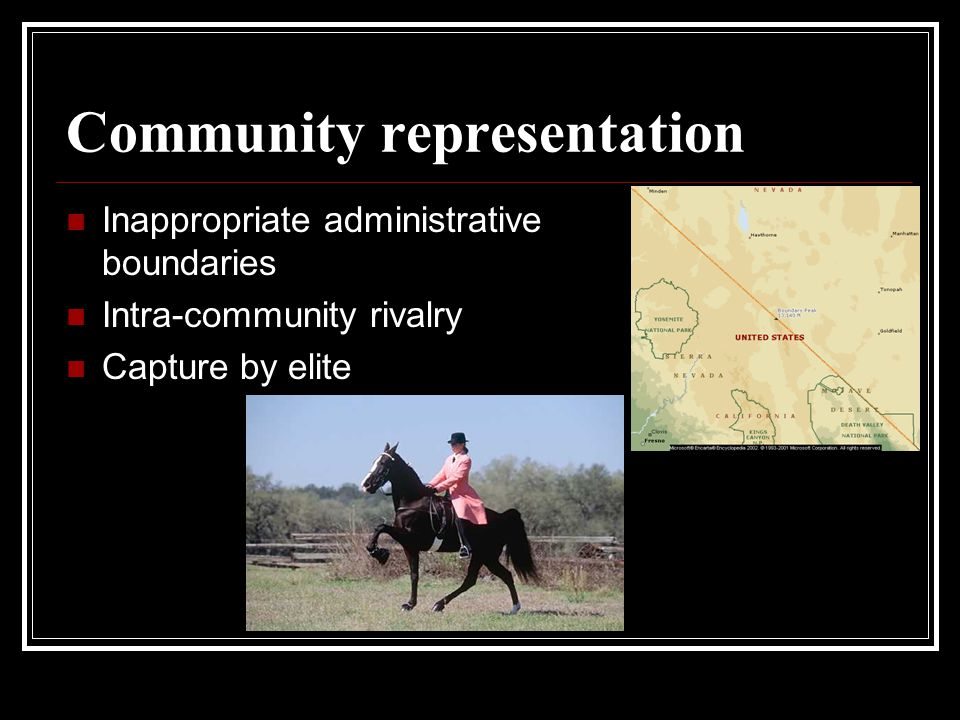 Community representation Inappropriate administrative boundaries Intra-community rivalry Capture by elite