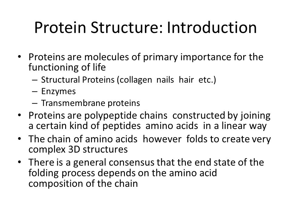Protein Structure: Introduction Proteins are molecules of primary importance for the functioning of life – Structural Proteins (collagen nails hair et