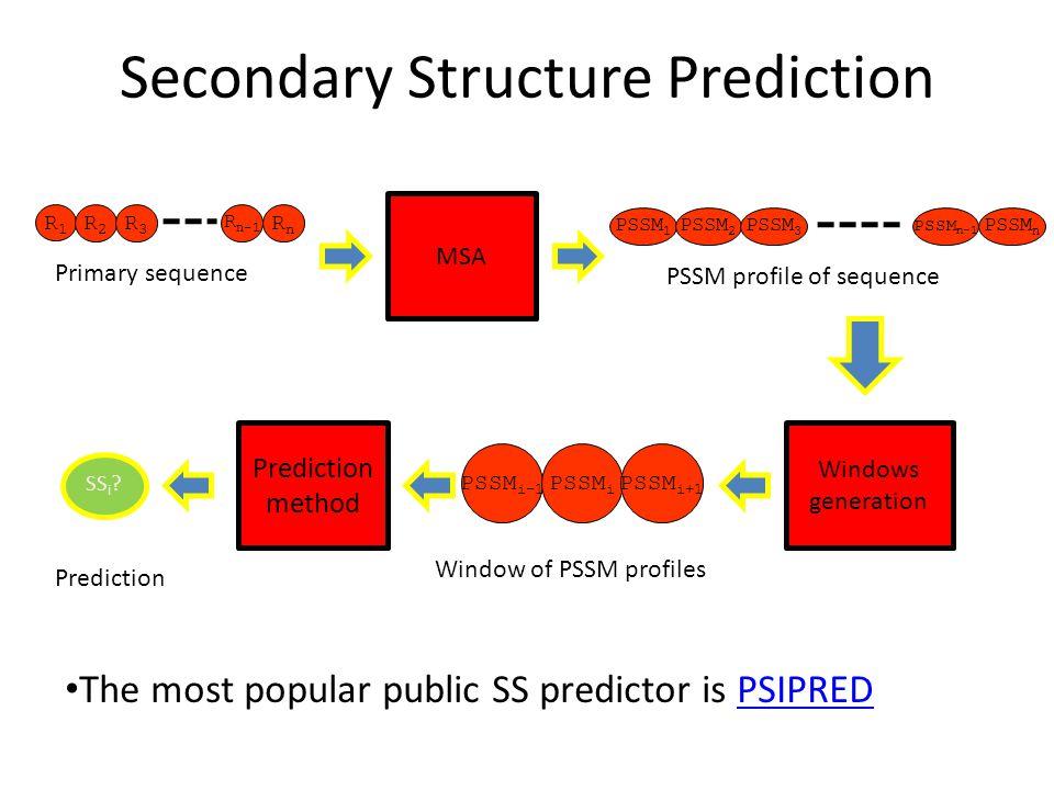 Secondary Structure Prediction R1R1 R2R2 R3R3 R n-1 RnRn Primary sequence MSA PSSM 1 PSSM 2 PSSM 3 PSSM n-1 PSSM n PSSM profile of sequence Windows ge