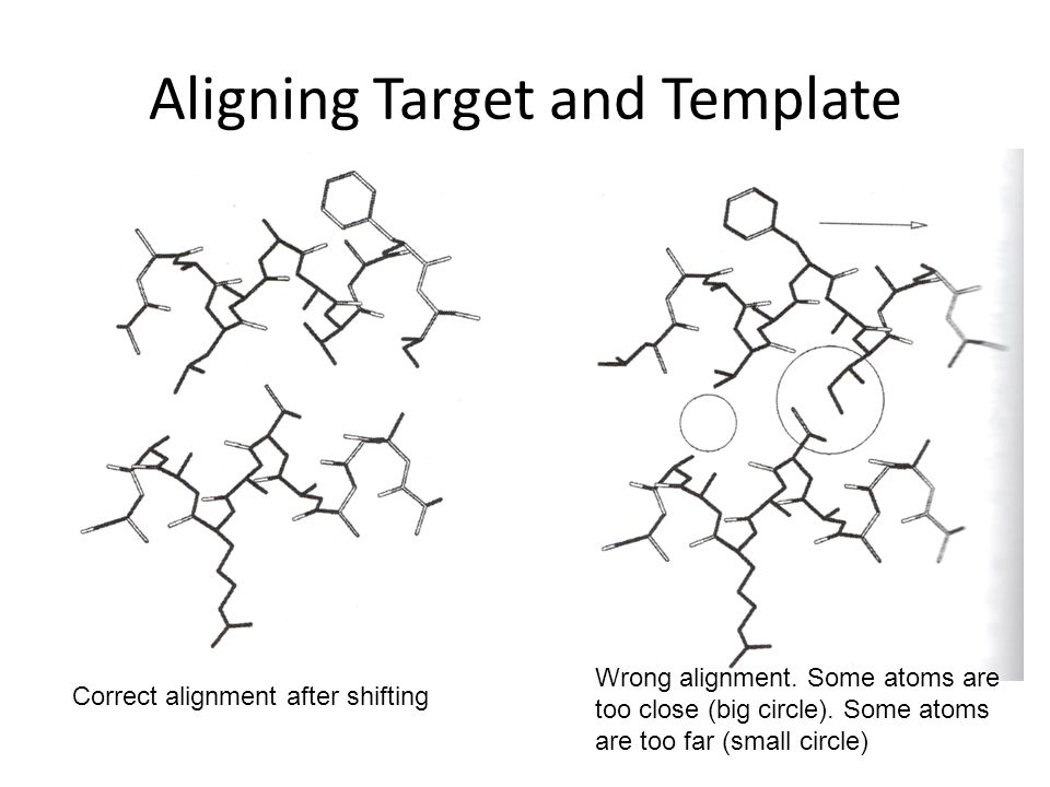 Aligning Target and Template Correct alignment after shifting Wrong alignment. Some atoms are too close (big circle). Some atoms are too far (small ci
