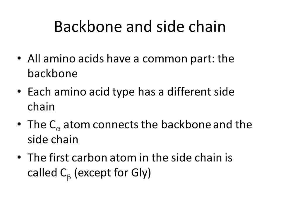 Backbone and side chain All amino acids have a common part: the backbone Each amino acid type has a different side chain The C α atom connects the bac