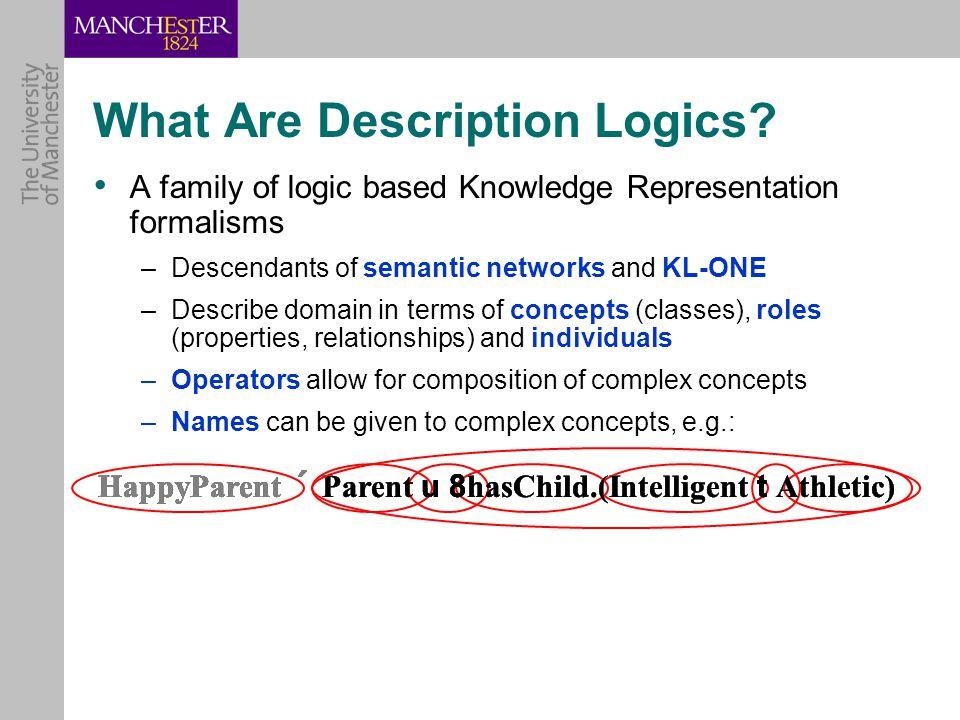 What Are Description Logics.