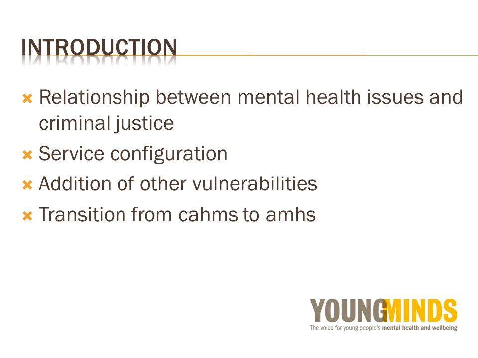  Relationship between mental health issues and criminal justice  Service configuration  Addition of other vulnerabilities  Transition from cahms to amhs