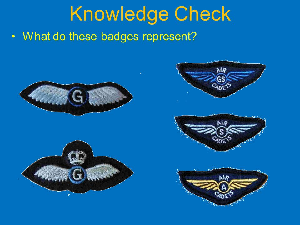 Knowledge Check What do these badges represent?
