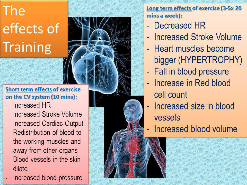 The effects of Training Short term effects of exercise on the CV system (10 mins): -Increased HR -Increased Stroke Volume -Increased Cardiac Output -R