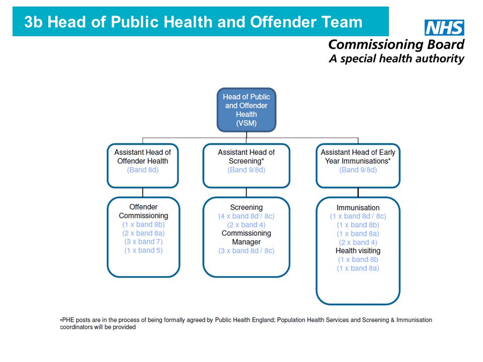 3b Head of Public Health and Offender Team
