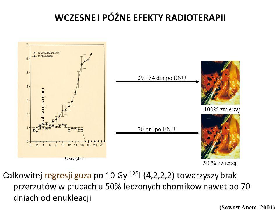 WCZESNE I PÓŹNE EFEKTY RADIOTERAPII Całkowitej regresji guza po 10 Gy 125 I (4,2,2,2) towarzyszy brak przerzutów w płucach u 50% leczonych chomików nawet po 70 dniach od enukleacji Średnica guza (mm) Czas (dni) 29 –34 dni po ENU 100% zwierząt 70 dni po ENU 50 % zwierząt (Sawow Aneta, 2001)