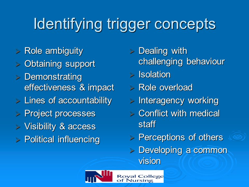 Identifying trigger concepts  Role ambiguity  Obtaining support  Demonstrating effectiveness & impact  Lines of accountability  Project processes