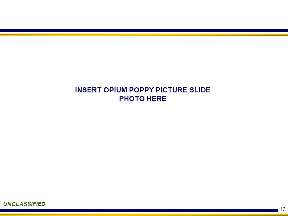 19 UNCLASSIFIED INSERT OPIUM POPPY PICTURE SLIDE PHOTO HERE