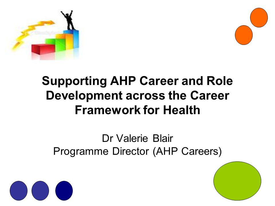 Pillars Clinical Facilitating Learning Leadership Research Leadership