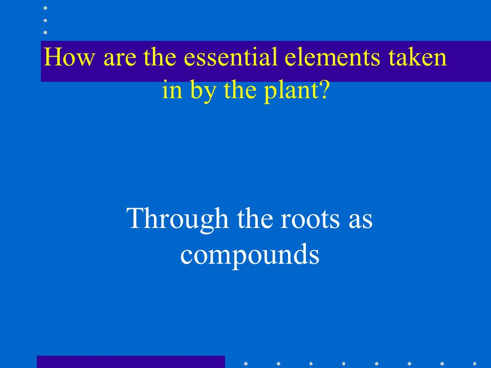 How are the essential elements taken in by the plant Through the roots as compounds