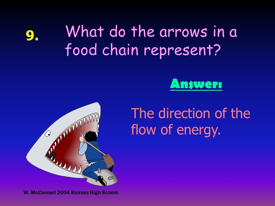 W. McConnell 2004 Kinross High School 9. What do the arrows in a food chain represent.
